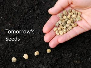 Tomorrow's Seeds